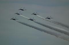 入間基地航空祭2012年 T-4 ブルーインパルス