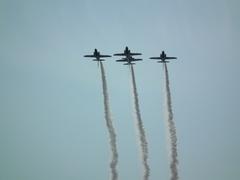 2013年 静浜基地航空祭 ブルーインパルス